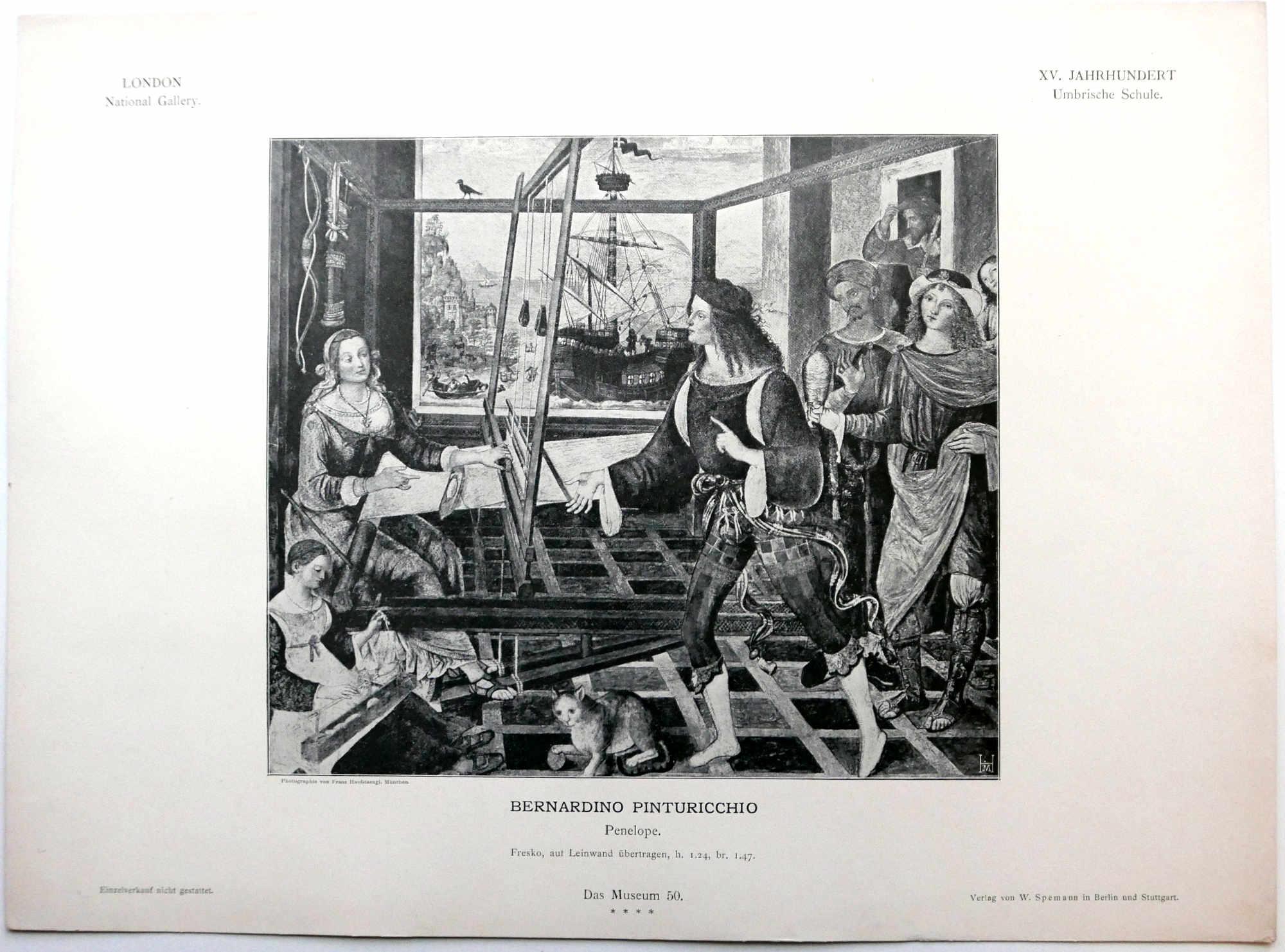 Das Museum Art Prints Pinturicchio
