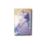Image of the book Taidehalli 84 / Postkulttuuri